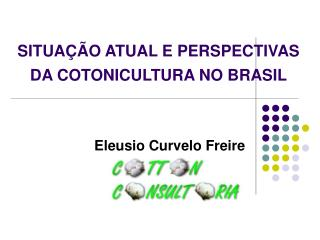 SITUAÇÃO ATUAL E PERSPECTIVAS DA COTONICULTURA NO BRASIL