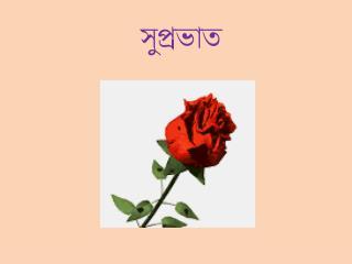 সুপ্রভাত