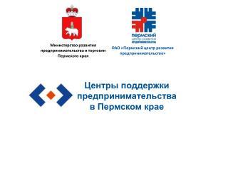 Центры поддержки предпринимательства в Пермском крае
