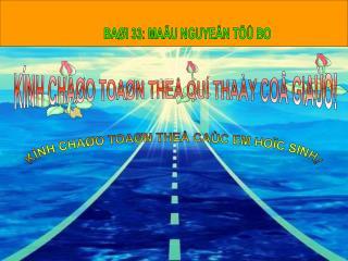 BAØI 33: MAÃU NGUYEÂN TÖÛ BO
