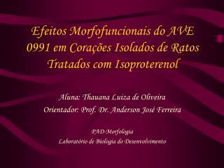 Efeitos Morfofuncionais do AVE 0991 em Corações Isolados de Ratos Tratados com Isoproterenol