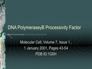 DNA Polymerase γ B Processivity Factor