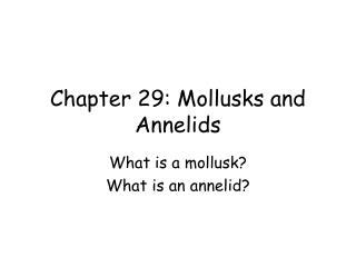 Chapter 29: Mollusks and Annelids