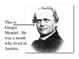 This is Gregor Mendel. He was a monk who lived in Austria.