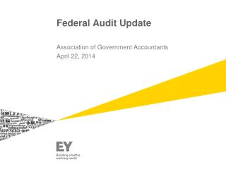 Federal Audit Update