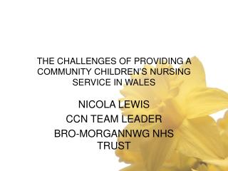 THE CHALLENGES OF PROVIDING A COMMUNITY CHILDREN'S NURSING SERVICE IN WALES