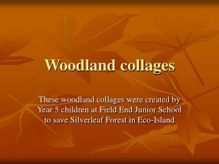 Woodland collages