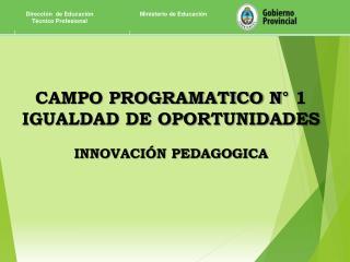 CAMPO PROGRAMATICO N° 1 IGUALDAD DE OPORTUNIDADES INNOVACIÓN PEDAGOGICA