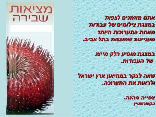 אתם מוזמנים לצפות במצגת צילומים של עבודות מאחת התערוכות היותר מעניינות שמוצגות בתל אביב.