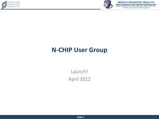 N-CHIP User Group