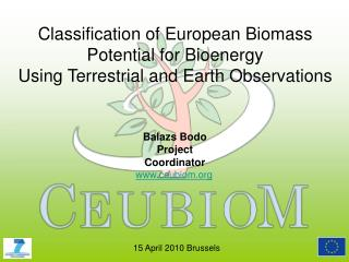 Classification of European Biomass Potential for Bioenergy