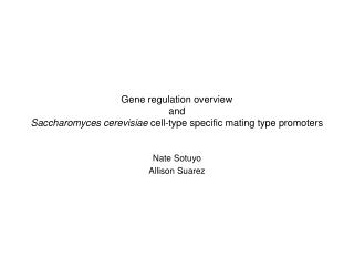 Gene regulation overview and Saccharomyces cerevisiae  cell-type specific mating type promoters