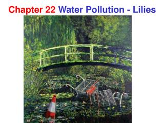 Chapter 22 Water Pollution - Lilies
