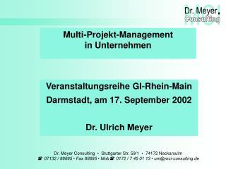 Multi-Projekt-Management in Unternehmen