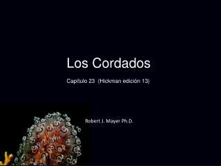 Los Cordados Capítulo 23 (Hickman edición 13)