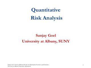 Quantitative Risk Analysis Sanjay Goel University at Albany, SUNY