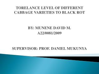 TORELANCE LEVEL OF DIFFERENT CABBAGE VARIETIES TO BLACK ROT BY: MUNENE DAVID M. A22/0081/2009