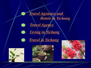 Travel Agencies and  Hotels in Yichang