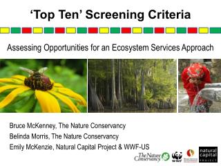 'Top Ten' Screening Criteria