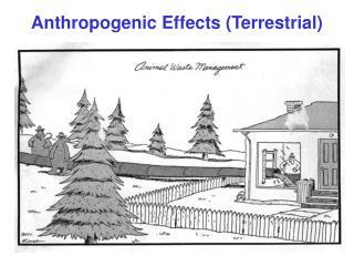 Anthropogenic Effects (Terrestrial)