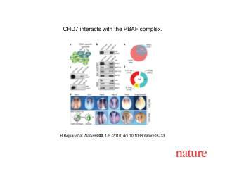 R Bajpai et al. Nature 000 , 1 - 5 (2010) doi:10.1038/nature08 733