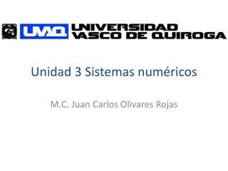 Unidad 3 Sistemas numéricos