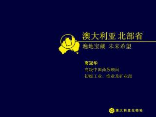 高冠华 高级中国商务顾问 初级工业、渔业及矿业部