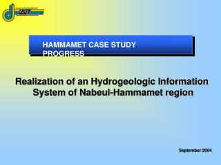 HAMMAMET CASE STUDY PROGRESS