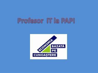 Profesor IT la PAPI