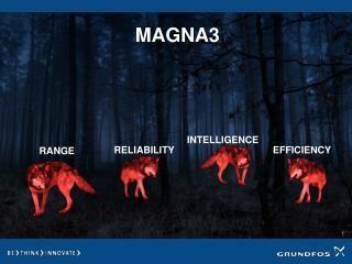 MAGNA3