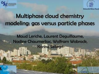 Multiphase cloud chemistry modeling: gas versus particle phases