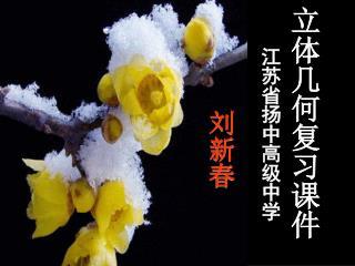 立体几何复习课件 江苏省扬中高级中学