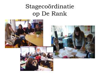 Stagecoördinatie op De Rank