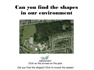 Can you find the shapes in our environment