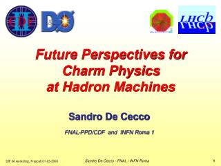 Future Perspectives for Charm Physics at Hadron Machines