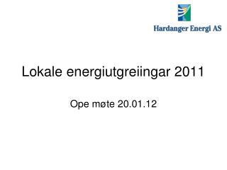 Lokale energiutgreiingar 2011