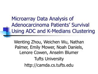 Microarray Data Analysis of Adenocarcinoma Patients' Survival Using ADC and K-Medians Clustering
