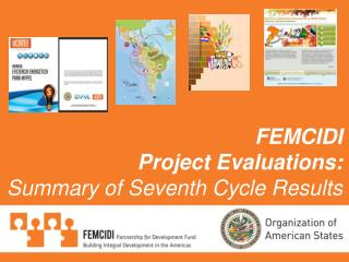 FEMCIDI Project Evaluations: Summary of Seventh Cycle Results