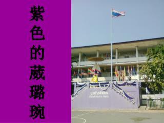 紫色的葳璐琬