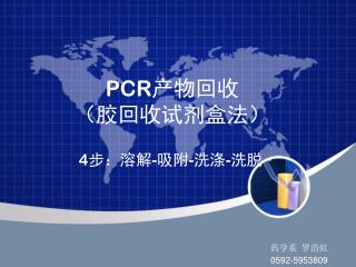 PCR 产物回收 (胶回收试剂盒法)