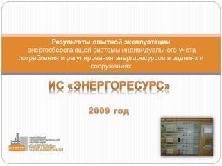 ИС «Энергоресурс» 2009 год