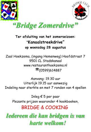 """Bridge Zomerdrive"""