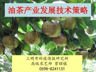 油茶产业发展技术策略