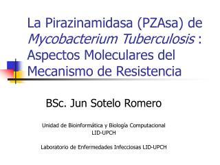 BSc. Jun Sotelo Romero Unidad de Bioinformática y Biología Computacional LID-UPCH
