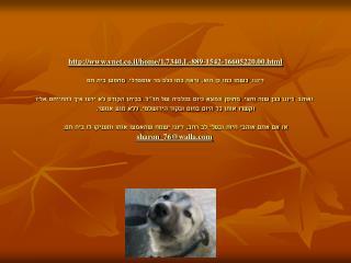ynet.co.il/home/1,7340,L-889-1542-16563597,00.html
