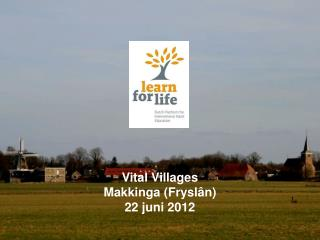 Vital Villages Makkinga ( Fryslân ) 22 juni 2012