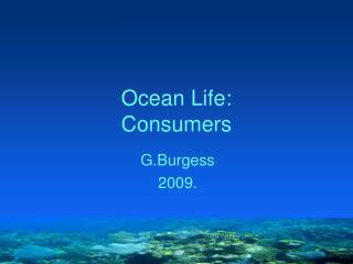 Ocean Life: Consumers