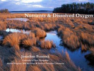 Nutrients & Dissolved Oxygen