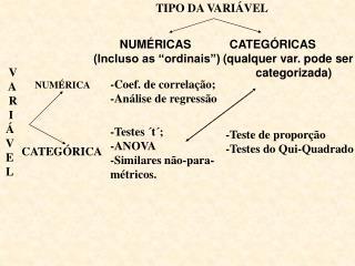TIPO DA VARIÁVEL