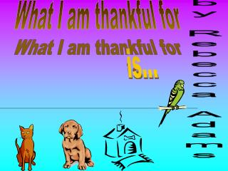 What I am thankful for                  is...